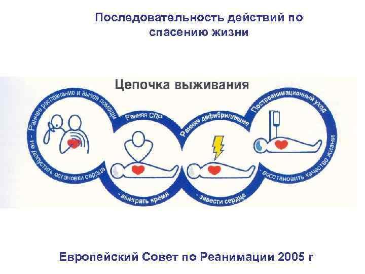 Последовательность действий по спасению жизни 8, 6 Европейский Совет по Реанимации 2005 г
