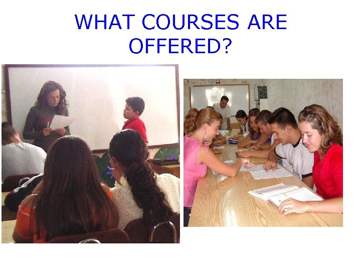 WHAT COURSES ARE OFFERED?