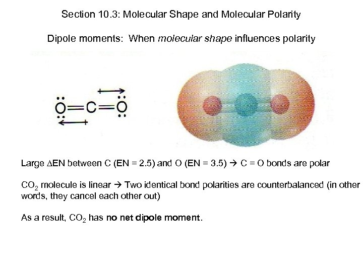 Section 10. 3: Molecular Shape and Molecular Polarity Dipole moments: When molecular shape influences