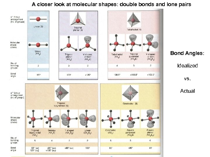 A closer look at molecular shapes: double bonds and lone pairs Bond Angles: Idealized
