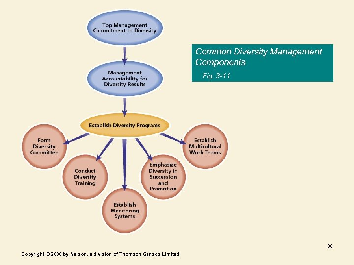 Common Diversity Management Components Fig. 3 -11 38 Copyright © 2008 by Nelson, a