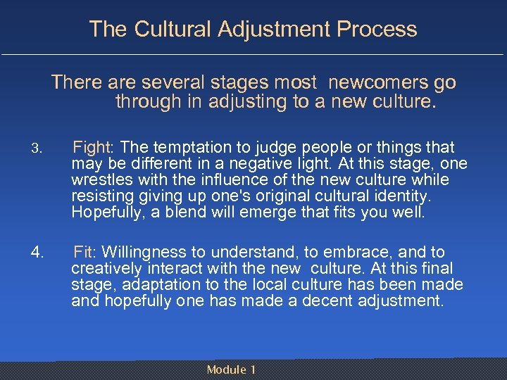 The Cultural Adjustment Process There are several stages most newcomers go through in adjusting