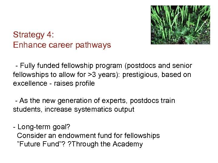Strategy 4: Enhance career pathways - Fully funded fellowship program (postdocs and senior fellowships