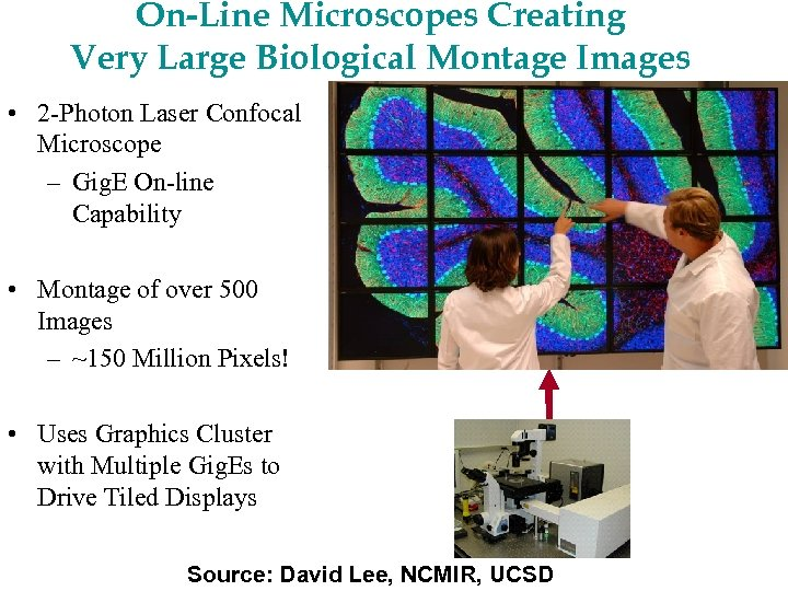 On-Line Microscopes Creating Very Large Biological Montage Images • 2 -Photon Laser Confocal Microscope