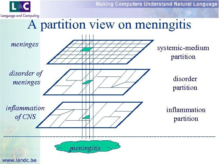 A partition view on meningitis meninges systemic-medium partition disorder of meninges disorder partition inflammation