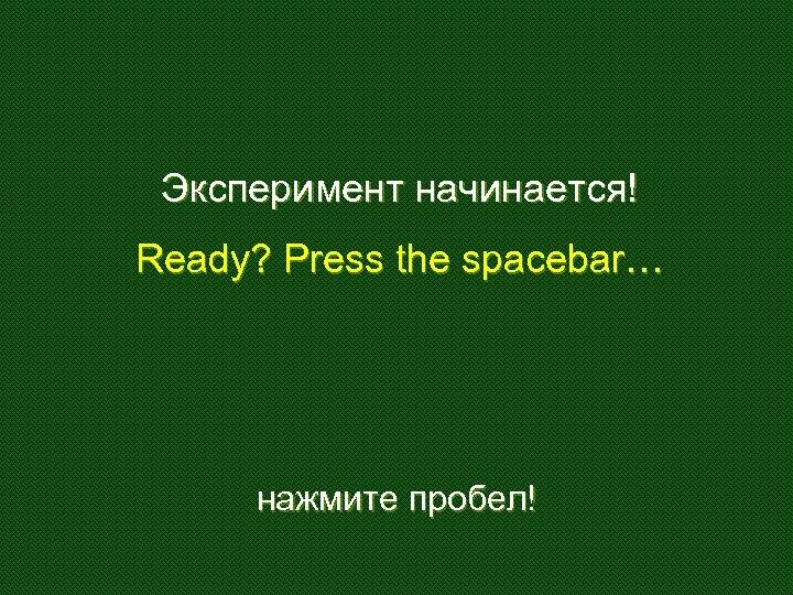 Эксперимент начинается! Ready? Press the spacebar… нажмите пробел!
