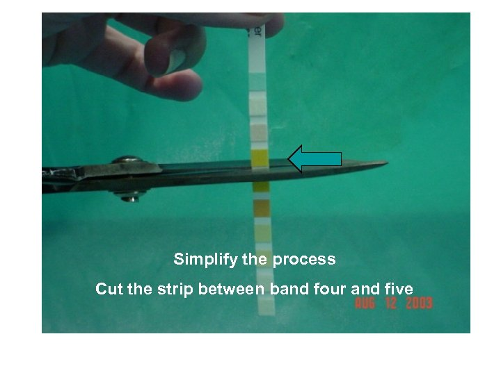 Simplify the Process Cut the Strip Below Band Three Simplify the process Cut the