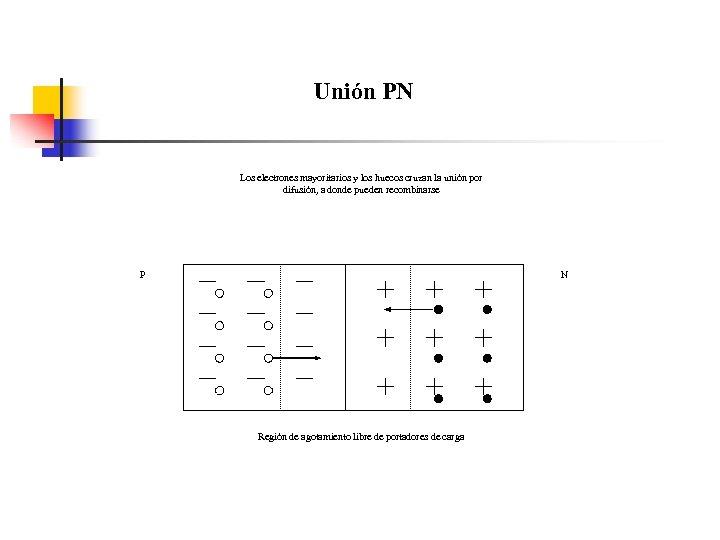 Unión PN Los electrones mayoritarios y los huecos cruzan la unión por difusión, a
