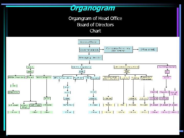 Organogram Organgram of Head Office Board of Directors Chart