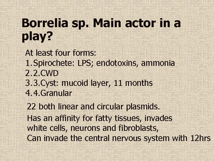 Borrelia sp. Main actor in a play? At least four forms: 1. Spirochete: LPS;