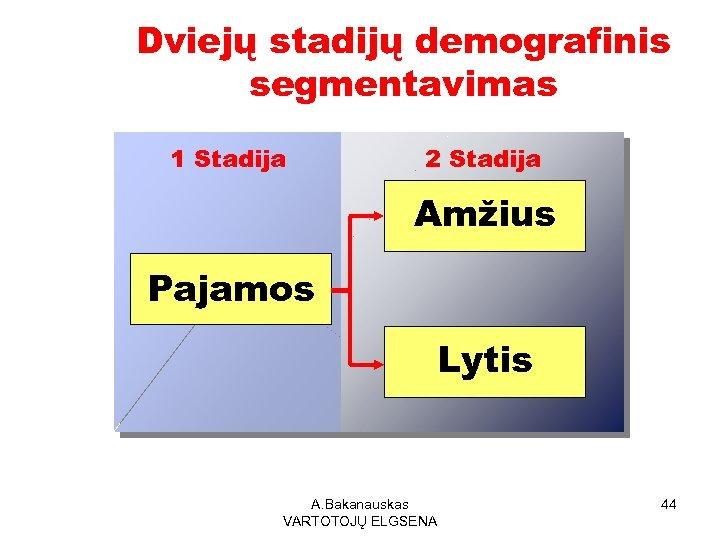 Dviejų stadijų demografinis segmentavimas 1 Stadija 2 Stadija Amžius Pajamos Lytis A. Bakanauskas VARTOTOJŲ