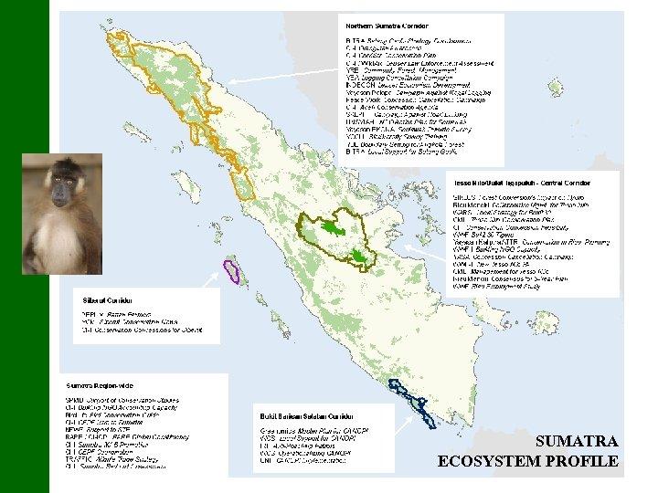 SUMATRA ECOSYSTEM PROFILE