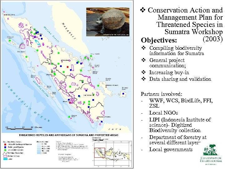 v Conservation Action and Management Plan for Threatened Species in Sumatra Workshop (2003) Objectives: