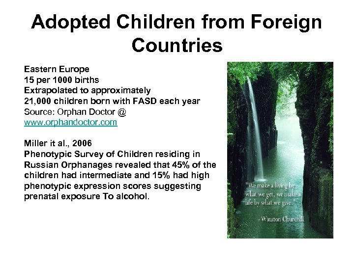 Adopted Children from Foreign Countries Eastern Europe 15 per 1000 births Extrapolated to approximately