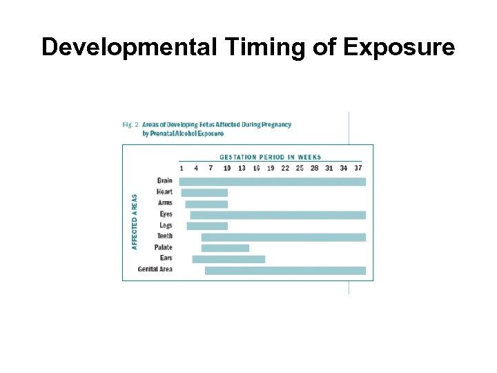Developmental Timing of Exposure