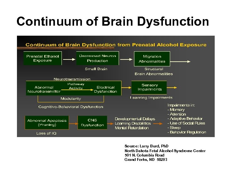 Continuum of Brain Dysfunction Source: Larry Burd, Ph. D North Dakota Fetal Alcohol Syndrome