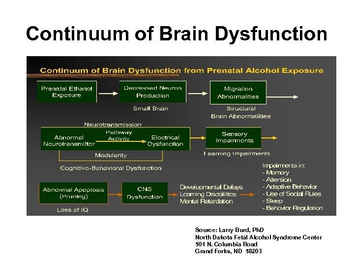 Continuum of Brain Dysfunction Source: Larry Burd, Ph. D North Dakota Fetal Alcohol Syndrome