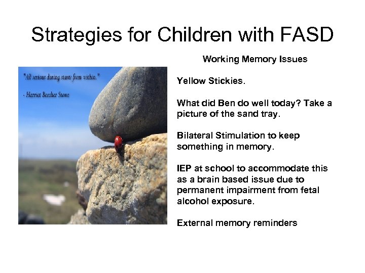 Strategies for Children with FASD Working Memory Issues Yellow Stickies. What did Ben do