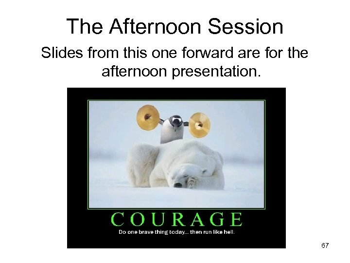 The Afternoon Session Slides from this one forward are for the afternoon presentation. 67