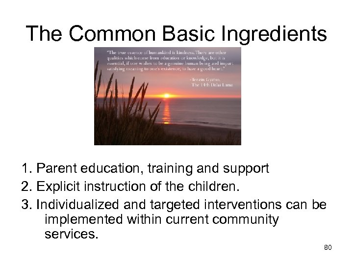 The Common Basic Ingredients 1. Parent education, training and support 2. Explicit instruction of
