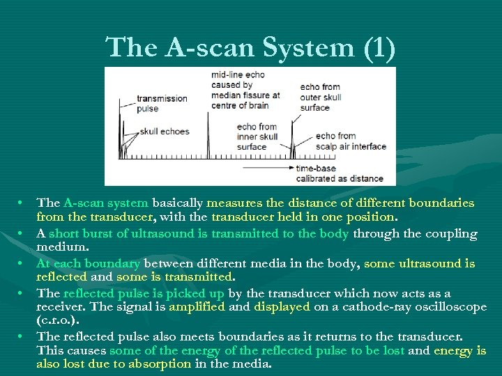 The A-scan System (1) • The A-scan system basically measures the distance of different