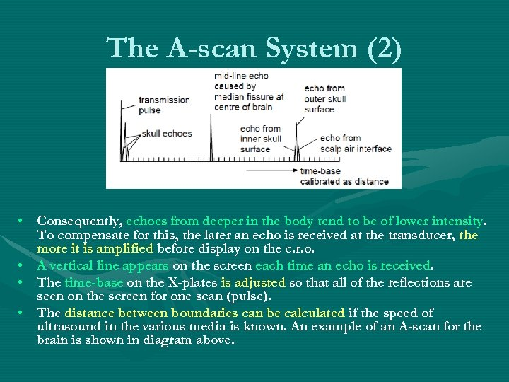 The A-scan System (2) • Consequently, echoes from deeper in the body tend to