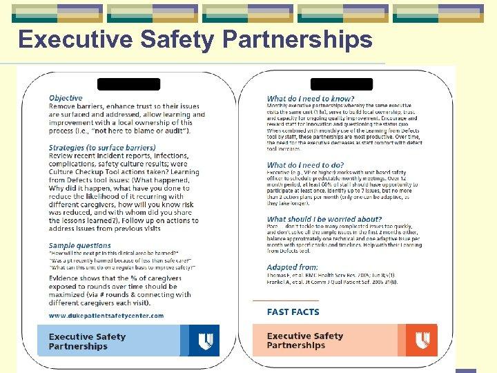 Executive Safety Partnerships Page 17