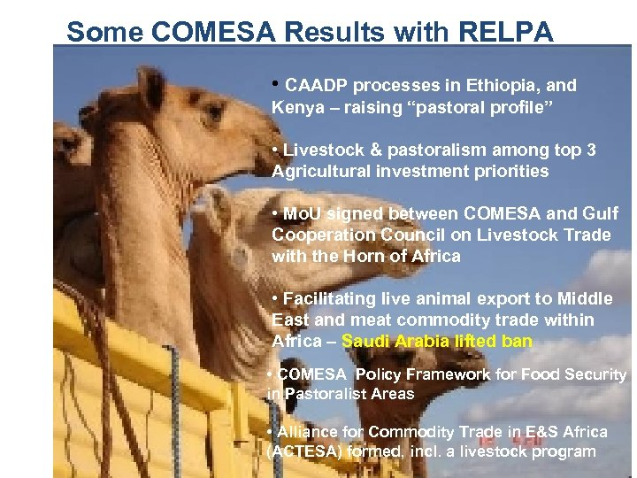 Some COMESA Results with RELPA • CAADP processes in Ethiopia, and Kenya – raising