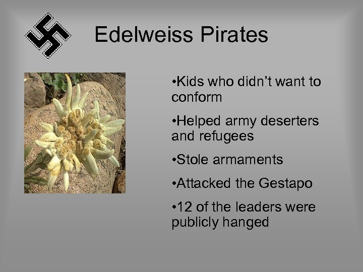 Edelweiss Pirates • Kids who didn't want to conform • Helped army deserters and