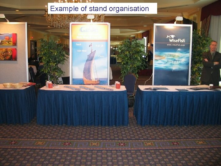 Example of stand organisation