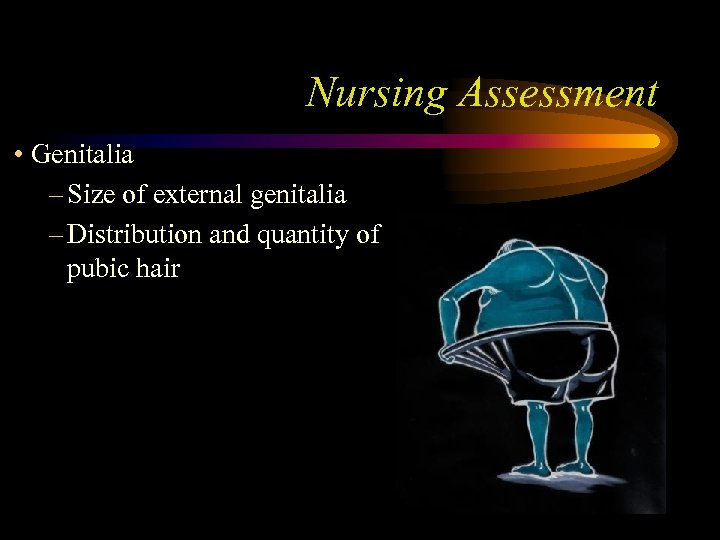 Nursing Assessment • Genitalia – Size of external genitalia – Distribution and quantity of