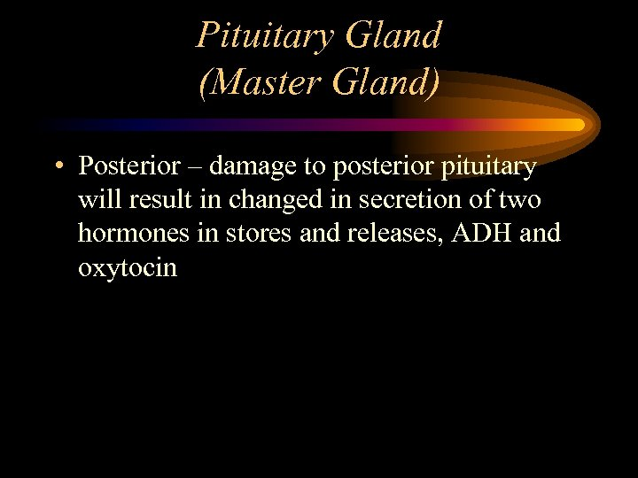 Pituitary Gland (Master Gland) • Posterior – damage to posterior pituitary will result in
