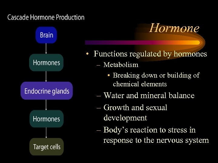 Hormone • Functions regulated by hormones – Metabolism • Breaking down or building of