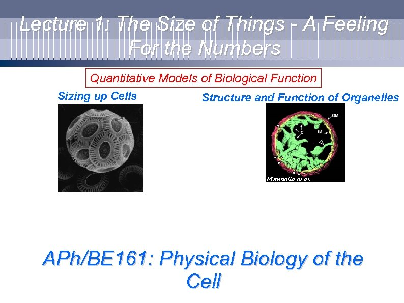 Lecture 1: The Size of Things - A Feeling For the Numbers Quantitative Models