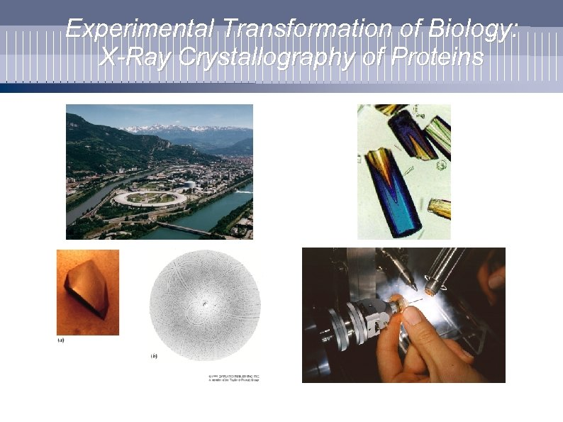 Experimental Transformation of Biology: X-Ray Crystallography of Proteins