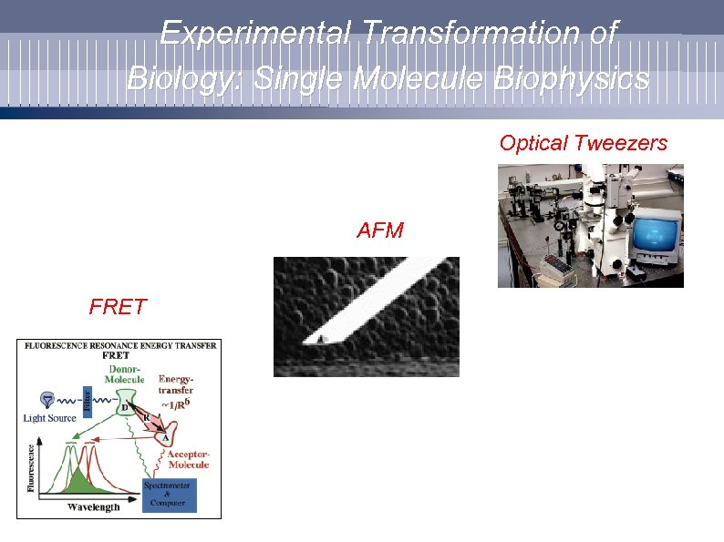 Experimental Transformation of Biology: Single Molecule Biophysics Optical Tweezers AFM FRET