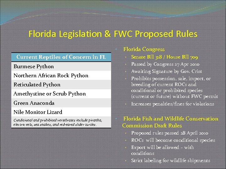 Florida Legislation & FWC Proposed Rules • Current Reptiles of Concern in FL •