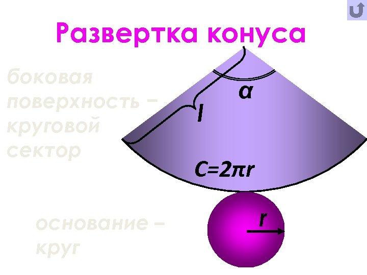 Развертка конуса боковая поверхность − круговой сектор основание – круг l α C=2πr r
