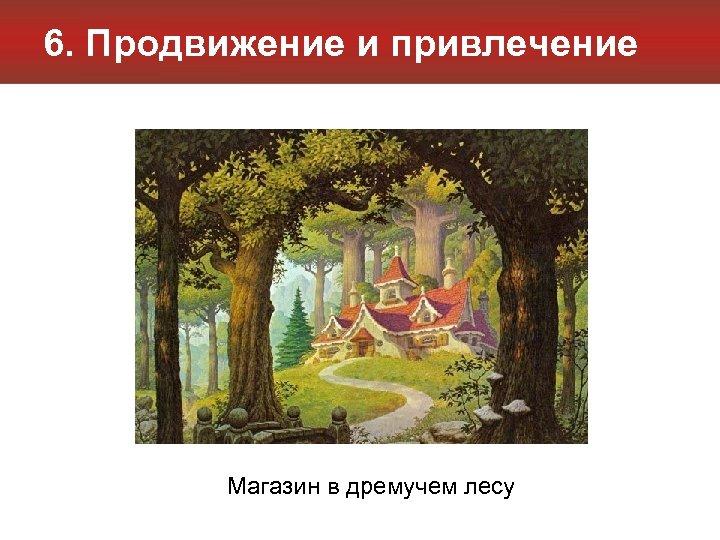 6. Продвижение и привлечение Магазин в дремучем лесу