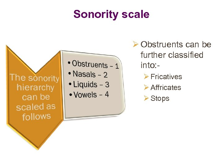 Sonority scale Ø Obstruents can be further classified into: Ø Fricatives Ø Affricates Ø