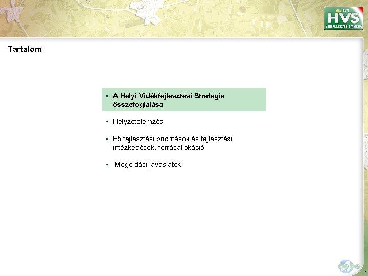 Tartalom ▪ A Helyi Vidékfejlesztési Stratégia összefoglalása ▪ Helyzetelemzés ▪ Fő fejlesztési prioritások és