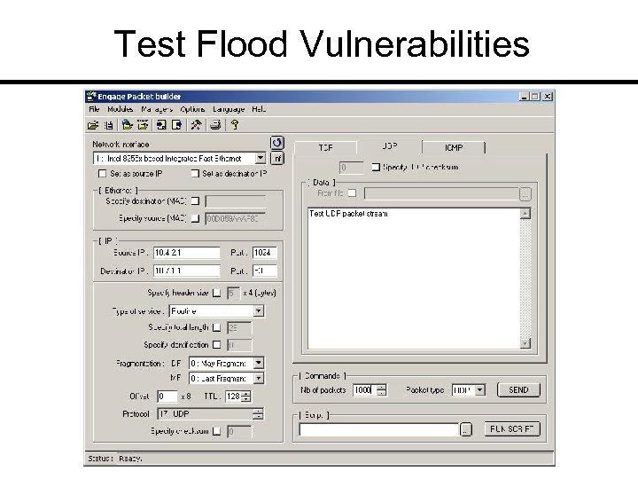 Test Flood Vulnerabilities