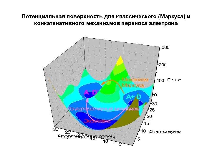 Потенциальная поверхность для классического (Маркуса) и конкатенативного механизмов переноса электрона