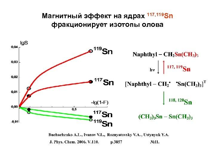 Магнитный эффект на ядрах 117, 119 Sn фракционирует изотопы олова
