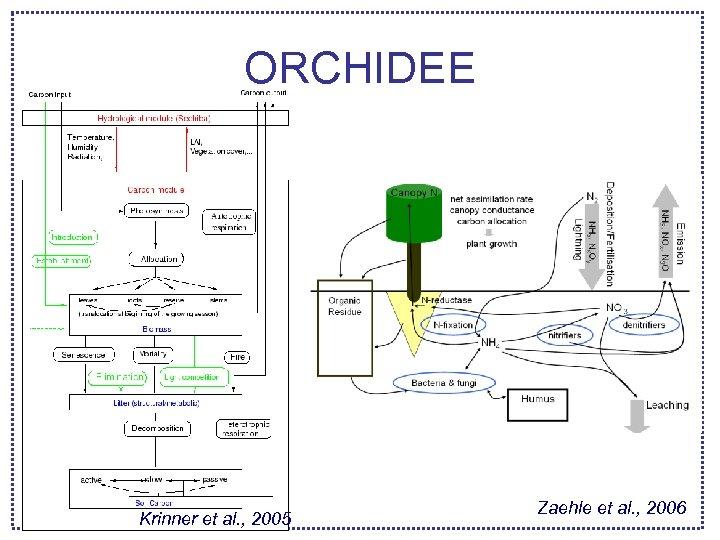 ORCHIDEE Krinner et al. , 2005 Zaehle et al. , 2006