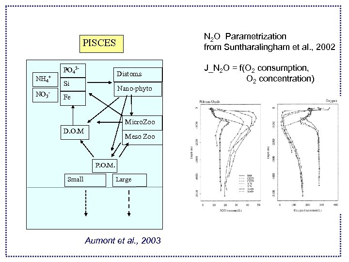 N 2 O Parametrization from Suntharalingham et al. , 2002 PISCES NH 4+ NO