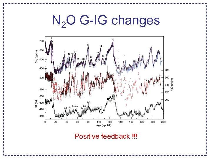 N 2 O G-IG changes Positive feedback !!!