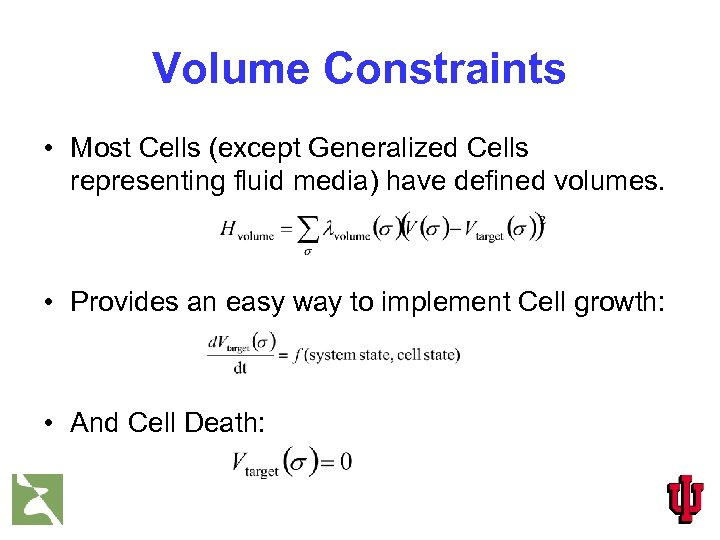 Volume Constraints • Most Cells (except Generalized Cells representing fluid media) have defined volumes.