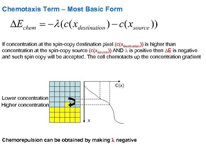 Chemotaxis Term – Most Basic Form If concentration at the spin-copy destination pixel (c(xdestination))
