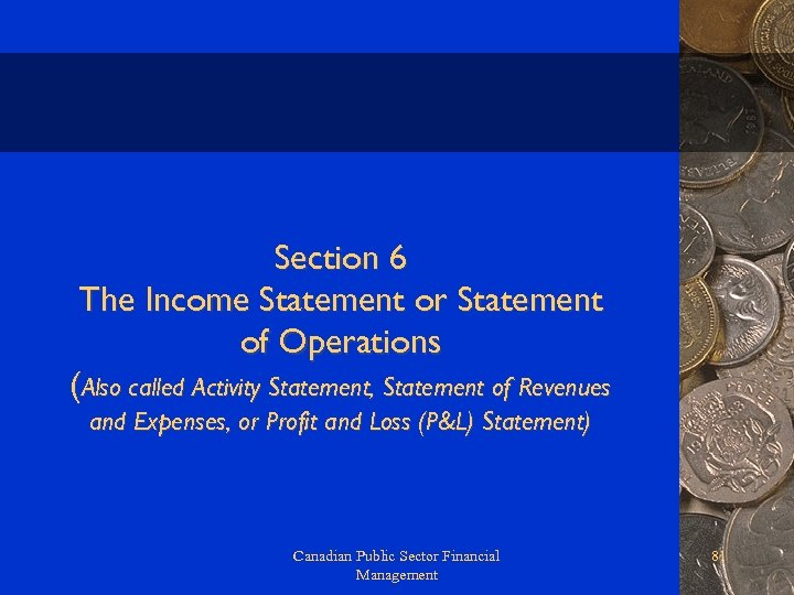Section 6 The Income Statement or Statement of Operations (Also called Activity Statement, Statement